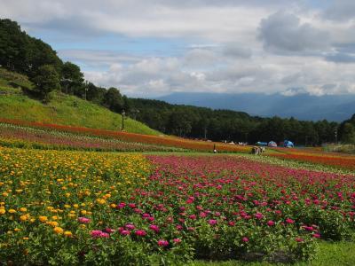 花の里 富士見高原スキー場