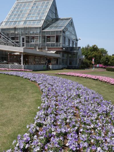 野田-5 花ファンタジア 花壇多彩に デザインも凝って ☆トピアリーも可愛く