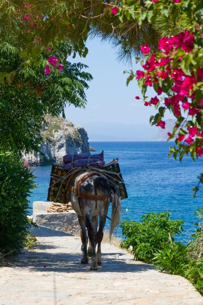 ギリシャの旅(3)美しくのどかな島イドラ