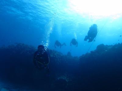 今年も沖縄へダイビング旅行 慶良間でダイビング
