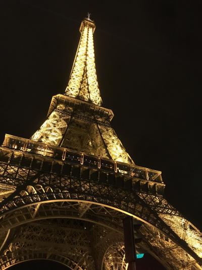 ANA特典航空券ビジネスクラスで行く、フランス女一人旅    ~ パリさんぽ  第1章