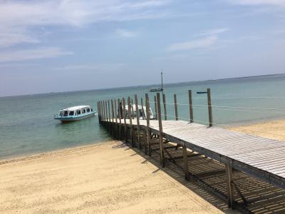 夏休み 沖縄(4泊5日)④