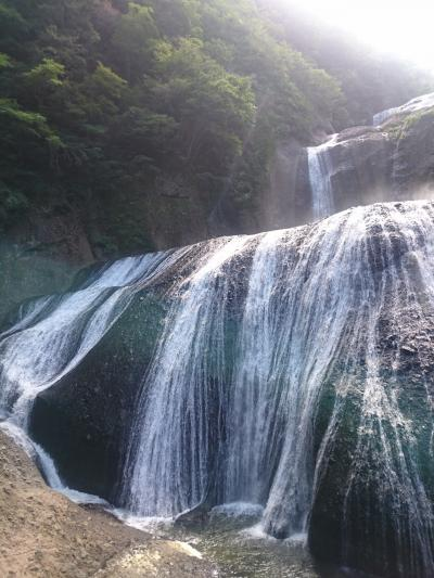 竜神大吊橋・袋田の滝・月待ちの滝*。そしてジニアとひまわりが見頃のひたち海浜公園    ヾ(。>v<。)ノ゛*。