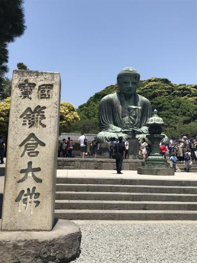 [神奈川・鎌倉]初めまして 鎌倉大仏