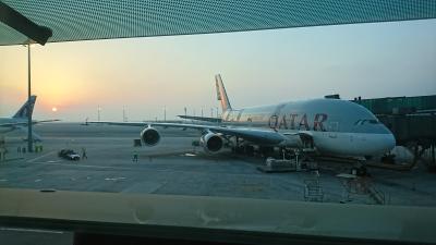 トランジット ハマド国際空港