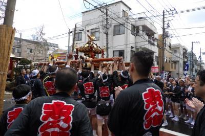 深川八幡祭り-神輿渡御2