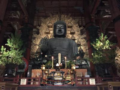 初めての奈良観光