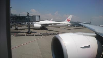 初めてのNYC - JALビジネスクラス搭乗記