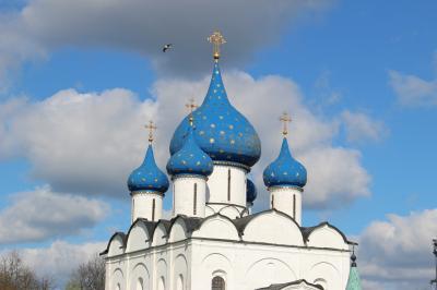 2017 May 黄金の環を巡る旅 スズダリ、クレムリン/ラジジェストヴェンスキー聖堂