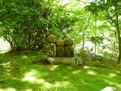 春の鎌倉 お寺の庭園と古民家カフェめぐり