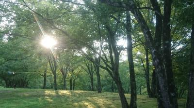 2017年お盆キャンプ(1)・備北オートビレッジ