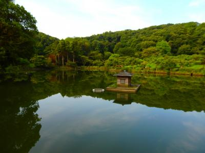 7月の連休は家でおとなしく・・でもちょっとだけ、薬師池公園に蓮の花を探しに行こう♪