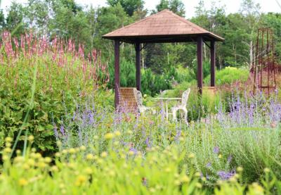 [十勝をぐるり]花と自然と畑の恵みを楽しむ旅(5)~おとぎの国のようなガーデン《大森ガーデン》