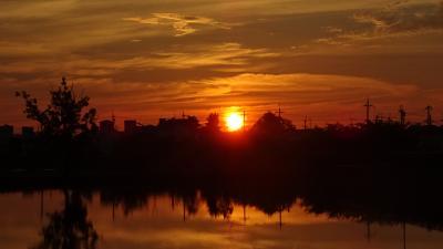 早朝散歩 伊丹市鴻池第一公園の日の出。
