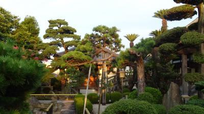早朝散歩 伊丹市鴻池第一公園からの帰り道。