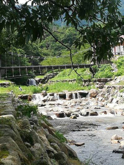 夏休みはマキノ高原キャンプ場に!天気も気温も良く、温泉にも入り満喫しました!