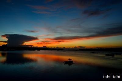 フィリピン マクタン島・ボホール島 自然観察・・・(後半のボホール島 さる・カニ・さかな・・)