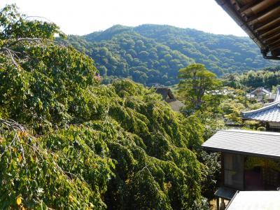 お寺でヨガして嵐山を散歩