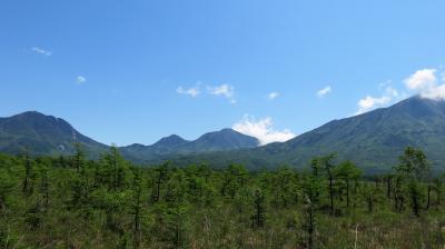 美しすぎる!日光歩き旅 ②戦場ヶ原~龍頭の滝ハイク