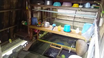 170818-19青春18きっぷで行く! 滋賀の豊かな水の文化を巡る旅【1】針江生水の郷