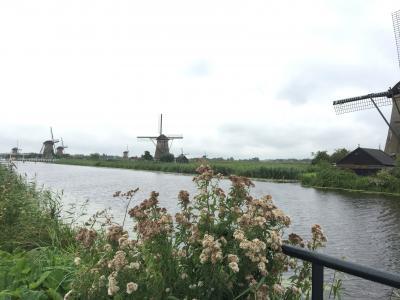 海外一人旅第13段はオランダ田舎町をお散歩 - 3日目(キンデルダイク、ロッテルダム編)