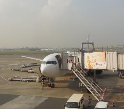 JAL300便 福岡→→羽田