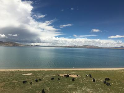 高山病で苦しむも満足の西蔵(チベット)4・5日目