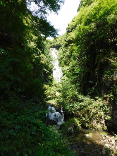 津山→蒜山高原→湯原温泉→神庭の滝 5(神庭の滝)