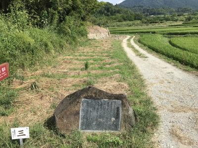 山の辺の道  柳本から桜井へ