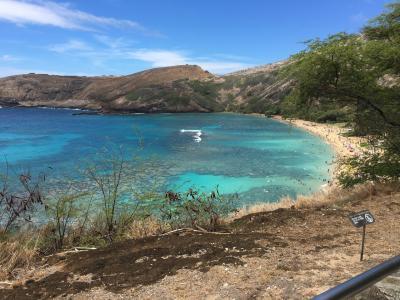 【サーフィン】5回目のハワイ 夫婦でサーフィン2017