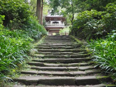 鎌倉へ5、浄智寺と明月院