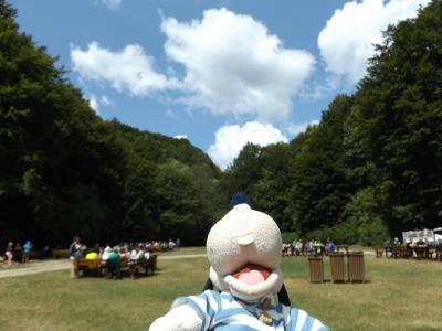 グーちゃん、クロアチアへ行く!(プリトヴィッツェ/モジャモジャ攻撃!編)