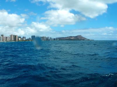 2017年8月 ハワイ島ナイトマンタ!とオアフ島ダイビング part2