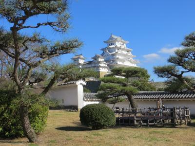 大人になってもクラブ合宿ーDay3 姫路城に登城