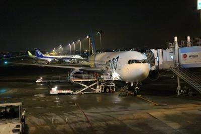 HD88/NH4788便、旭川→羽田搭乗メモ。皆さんお疲れの様子で爆睡?満席だが静かなフライト。