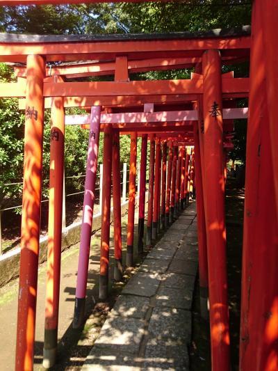 根津神社(乙女稲荷神社の千本鳥居)から駒込までお散歩 :*:・゜'★.。・:*:・゜'☆♪