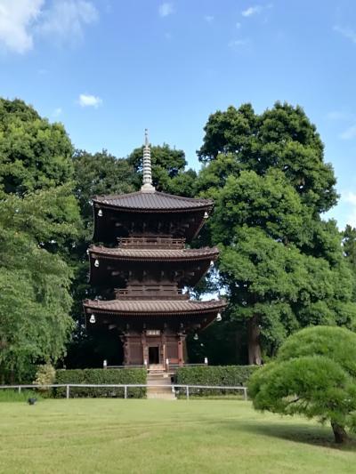 【目白】椿山荘で休息