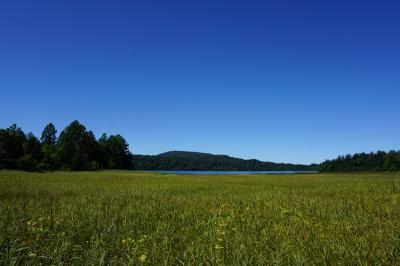 晴天の尾瀬沼散策