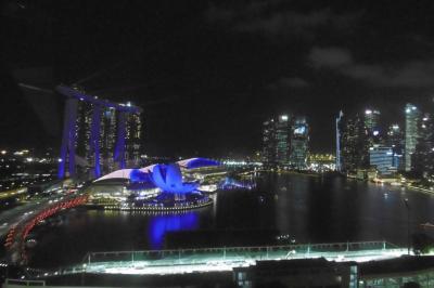 リベンジ!!シンガポール その1~新しいベイサンズのショー スペクトラ~