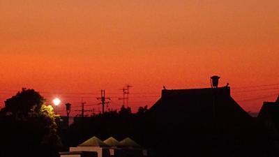 早朝散歩 鴻池第一公園の日の出。
