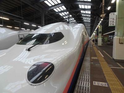 羽越線「特急いなほ」~上越新幹線E4系「MAXとき」グリーン車、乗車記