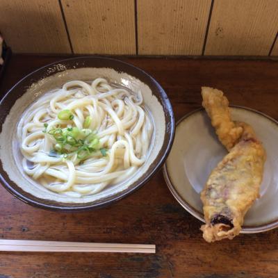 どこかにマイルで行く香川・高松の旅-1-