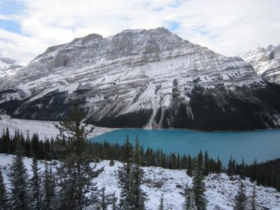秋のカナダ旅行記・2日目・カナディアンロッキー