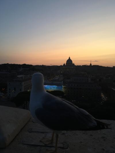 イタリアローマ_バチカン市国その2_新婚旅行♡4