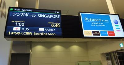 家族みんなで濃厚シンガポ-ル~JALビジネスクラス(B787)に乗ってリッツカ-ルトンに宿泊~