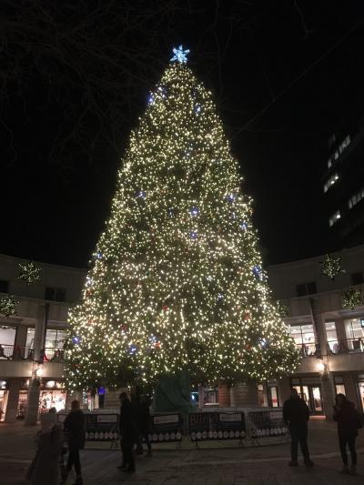 ボストン・ニューヨーククリスマス一人旅Part.1