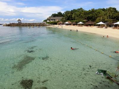熱帯魚と泳げるセブ島