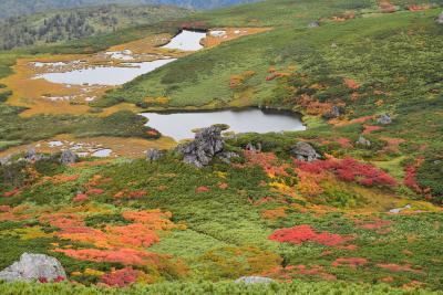 当麻乗越から眺める紅葉の据合平と沼の平 2017(北海道大雪山)