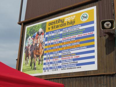 スロバキアの競馬場に行ってきました