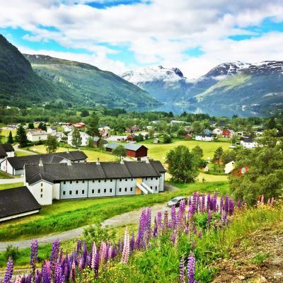 眠り姫は筋肉痛☆ガイドブックにはない絶景 -ルピナス咲くヒーリングの谷へ【Fjordドライブ1300km-2】